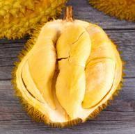 泰国进口 松林密语 金枕头榴莲 3斤-4斤