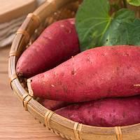 阿特果园 六鳌红薯 5斤装