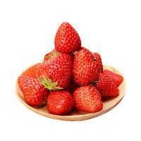 黄河畔 红颜奶油草莓 3斤装